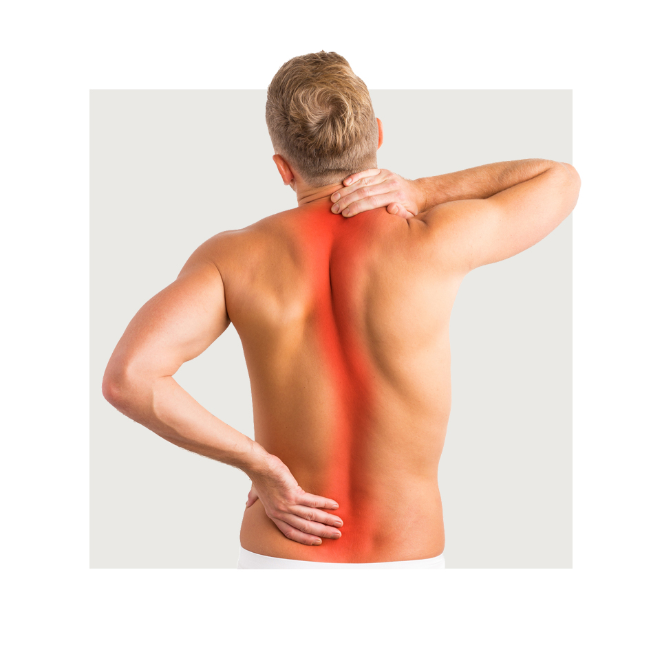 Back Pain Whole Health Physical Therapy San Diego